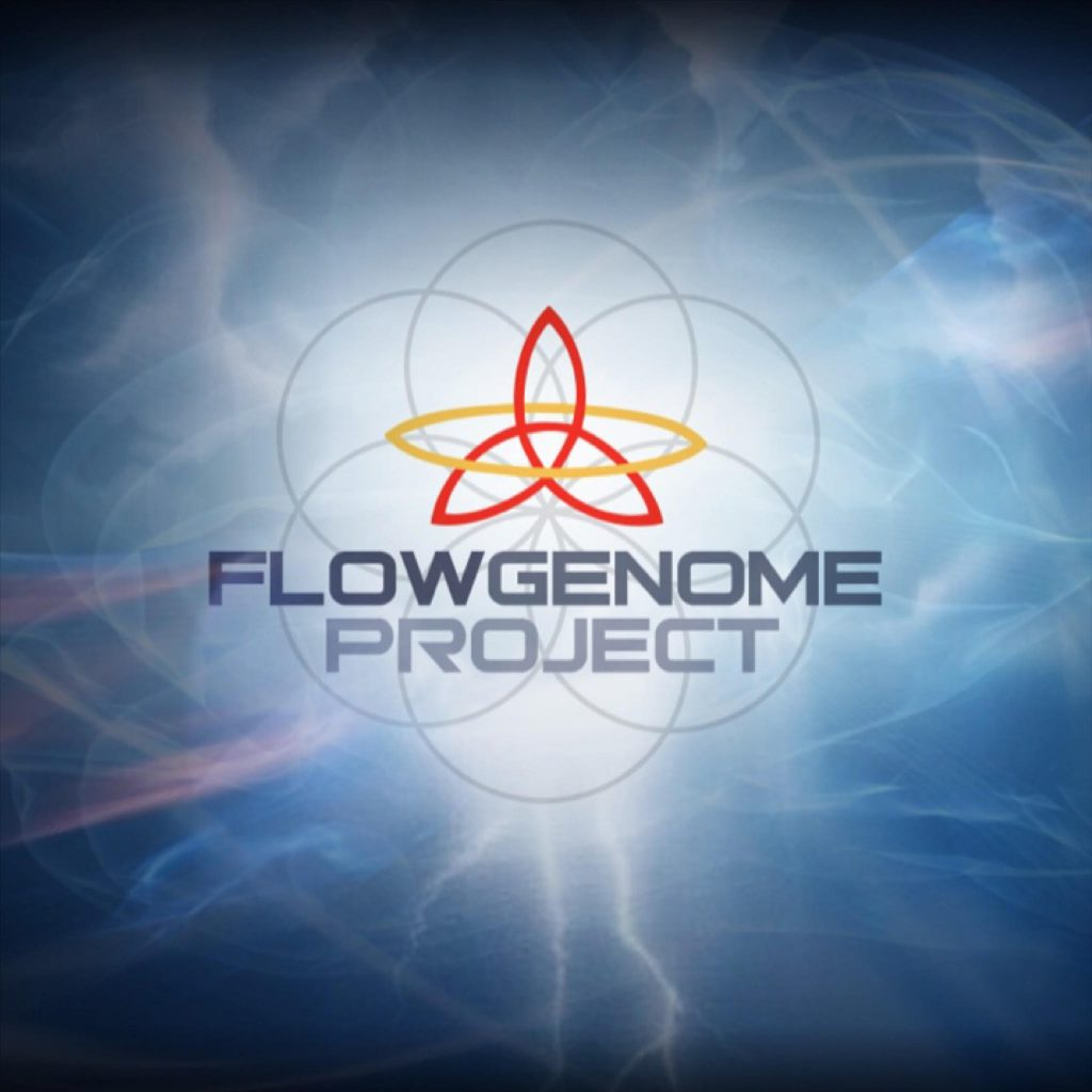 Flow Genome Project LIVETHEFUEL Hard Charger Flow State